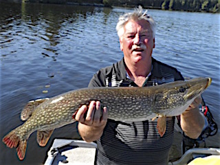 BIG Northern Pike Fishing by Jim OToole At Fireside Lodge